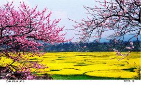 南宁到贵州旅游_南宁到贵州旅游线路