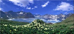 长白山全景、边境图们风光、冰凌花、纯玩四日游 VIP小包团